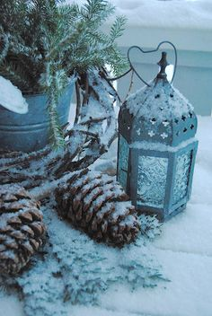 ♥♥Passion For Pine Cones Christmas Mood, Noel Christmas, All Things Christmas, Christmas Colors, Christmas Ideas, I Love Winter, Winter Time, Winter Holidays, Winter Magic