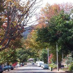 Murchison street Autumn 2014 Marysville Victoria, Autumn, Street, Fall, Roads