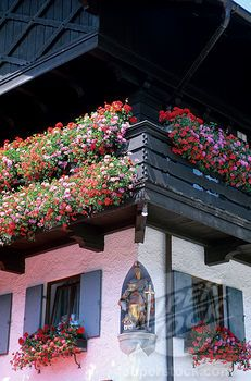 SuperStock - GERMANY, BAVARIA, OBERAMMERGAU, HOUSE WITH FLOWER BOXES, GERANIUMS