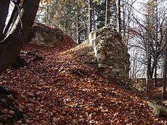 Džbán - fragment zdiva v severozápadním nároží. Castle Ruins, Czech Republic, Plants, Plant, Bohemia, Planets