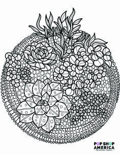 Free Adult Coloring Book Pages with Succulent Terrariums   https://popshopamerica.com/blog/free-adult-coloring-book-pages-succulent-terrariums/