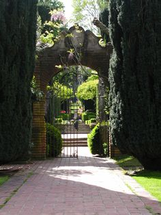 1000 Images About Gardening Northern California On Pinterest Northern California Stone