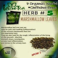 HERB #5 Organic Herbs, Natural Herbs, Dry Cough, Stomach Ulcers, Weight Loss Detox, Detox Tea, Detox Drinks, Health And Wellness