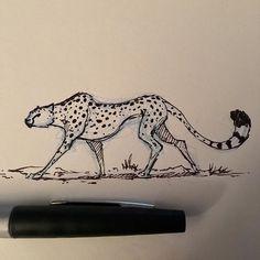 Animal Drawings A tiny cheetah Cheetah Drawing, Cat Drawing, Drawing Sketches, Painting & Drawing, Cheetah Tattoo, Animal Sketches, Animal Drawings, Amazing Drawings, Cat Art