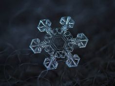 Snowflake Macro Photos Captured Using a Canon PowerShot Compact Camera