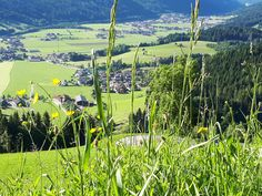 Cooler Ausblick aufs Flachautal #visitflachau #panorama #talblick Salzburg, Golf Courses, Mountains, Nature, Travel, Tourism, Hiking, Friends, Landscape