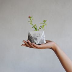 This gorgeous geometric plant pot:   19 Minimalist Marble Things That Will Warm Your Stone Cold Heart