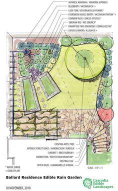Rain Garden Design rain garden landscape ideas madison wi proscapes llc Edible Rain Garden Plan
