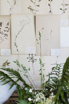 love the idea of wall art made from pressing nature walk finds with your little one.