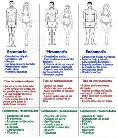 Los tipos somáticos: Ectomorfo, Mesomorfo y Endomorfo Clasificación de tipos somáticos Seguramente habréis observado cómo algunas personas tienen tendencia a engordar a lo más mínimo que descuiden ...