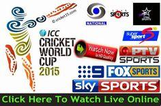 cricket español free online sport