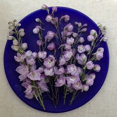 Gorgeous Delphiniums on dark blue glass plate. Styling and photography © Ingrid Henningsson for Of Spring and Summer.
