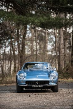 Some consider the Ferrari 275 the most beautiful car ever built. People who might agree include: actor Steve McQueen (who owned a 275 GTS, 275 GTB/4 and a 275 NART Spyder), actor Nicholas Cage (who used to own two 275 GTB/4s), actress Sophia Loren, even jazz legend Miles Davis owned one!