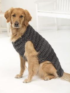 Sweaters for BIG dogs! Make our Marley Dog Sweater with 2 – 4 balls of Home… New! Sweaters for BIG dogs! Make our Marley Dog Sweater with 2 – 4 balls of Hometown USA yarn and a size mm) crochet hook. Crochet Dog Sweater Free Pattern, Dog Coat Pattern, Crochet Patterns, Sweater Patterns, Coat Patterns, Crochet Ideas, Knitting Patterns, Crochet Marley, Pull Crochet