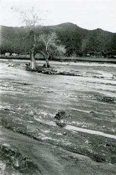 "Great Flood of 1938 -- Santa Clara River Overflows --aka Los Angeles Flood) of 1938 hit the greater Los Angeles area hardest overnight on March 1-2. By the time the water receded, 5,601 buildings had been destroyed and 113 to 115 Southland residents were killed.  Considered a 50-year flood, it started Feb. 27, 1938, when a storm system moved in from the Pacific Ocean and hit the San Gabriel Mountains. A 1nd storm came with 10"" of rain and 32"" in the mts."