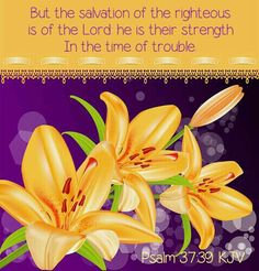 Hug Me Jesus ❤JESUS LOVES US❤ Shirley'sLove PRAYER AMEN PSALM 37:39 39. The Lord saves those who are good.     When they have troubles, he is their strength. ❤JESUS LOVES US❤
