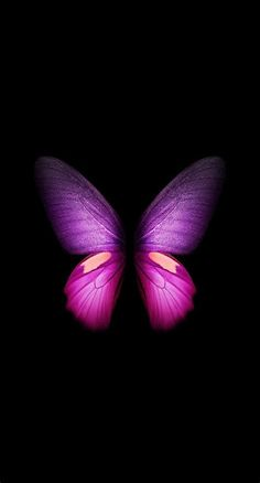 Purple Aesthetic Butterflies Wallpapers - Wallpaper Cave in 2021 | Butterfly wallpaper, Watercolor wallpaper phone, Butterfly wallpaper iphone