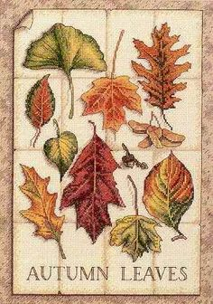 Leaves of Autumn cross stitch pattern - Cross stitch patterns design collection