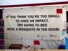 If you think you're too small to have an impact, try going to bed with a mosquito in the room. ~Anita Roddick