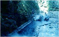 Official Site of Korea Tourism Org.: Hot Springs in Korea - Traditional Hot Springs