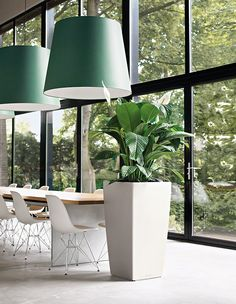Note the Size: Big houseplants can serve multiple functions; think of them as a living screen or half wall as well as a beautiful piece of living art. Resin Planters, Indoor Planters, Planter Pots, Corporate Interior Design, Wood Table Design, House Plants Decor, Office Plants, Interior Garden, Landscaping Plants