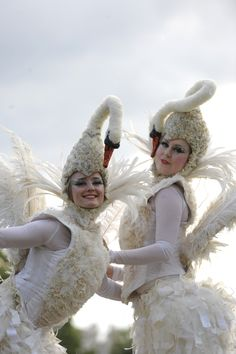 Our beautiful Bolli Darling swans