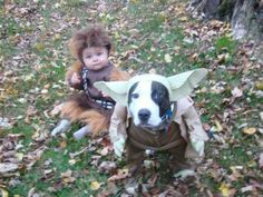 Cute Costumes You Have - The absolute funniest family FAILs & WINs that every parent should see once their kids are old enough. Star Wars Costumes, Dog Costumes, Halloween Costumes, Costume Ideas, Halloween Town, Halloween Stuff, Happy Halloween, Cosplay, The Meta Picture