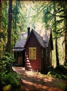Cabin on Mt. Hood near Zig Zag, Oregon. Contributed to Cabin Porn by Justin Chappelle. Nature Living, House In Nature, Living Spaces, Cabin In The Woods, Cottage In The Woods, Tiny Cabins, Cabins And Cottages, Log Cabins, Little Cabin