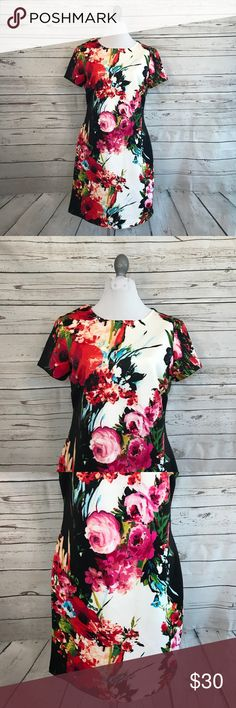 """Sandra Darren Floral Career Event dress Gorgeous floral dress by Sandra Darren. Black and white with multi-color floral pattern. Short sleeves. Zipper closure down the back. Great for career wear, night out, or events! Good used condition.   armpit to armpit: approx.18"""" waist: approx. 15.5"""" shoulder to bottom: approx. 35"""" Sandra Darren Dresses Mini"""