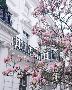 Photo by Margarita_karenko London Beautiful World, Beautiful Places, Rosa Pink, Spring Aesthetic, Photo Wall Collage, Beautiful Buildings, Pretty Pictures, Wallpaper Backgrounds, Wallpapers