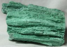 Rare Color Araucarioxylon Petrified Wood Section: Araucarioxylon Petrified Wood