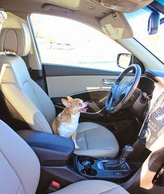 My Week in the 2015 Hyundai Santa Fe Sport AWD 2.0T