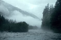 Hoh River Olympic National Forest, National Parks, Niagara Falls, Olympics, Fishing, Bloom, Sky, Dreams, River