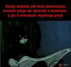 Very Funny Memes, Wtf Funny, Funny Cute, Polish Memes, Im Depressed, Weekend Humor, Creepy Cute, Meme Lord, Best Memes