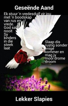 Evening Greetings, Good Night Greetings, Good Night Wishes, Good Night Quotes, Day Wishes, Good Night Love You, Text For Him, Afrikaanse Quotes, Goeie Nag