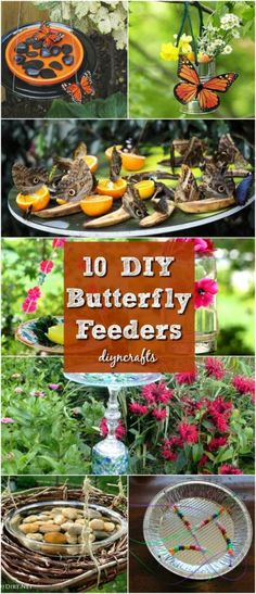 10 DIY butterfly feeders that give your garden beauty and butterflies … - Diy Garden Projects Diy Garden Projects, Garden Crafts, Diy Garden Decor, Creative Garden Ideas, Diy Garden Ideas On A Budget, Diy Ideas, Garden Kids, Outdoor Garden Decor, Cool Ideas