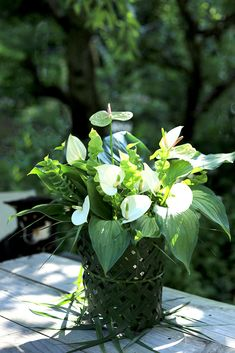 真夏のフラワーアレンジ 多彩なグリーンを使ってアジアのリゾート風に。アレカヤシの葉を編んで器もアレンジ – GardenStory (ガーデンストーリー) Resort Style, Flower Arrangements, Palm, Herbs, Leaves, Garden, Flowers, Plants, Weaving