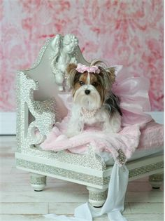 Swarovski Couture Bed- Beds, Blankets & Furniture - Furniture Style Beds Posh Puppy Boutique