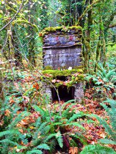 Abandoned House Molalla Oregon