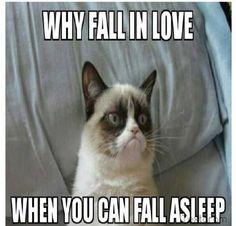 40+ Grumpy Cat Memes That You Will Love! #grumpycat #memes #Cats