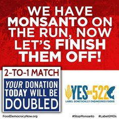 URGENT! Only 6 days left! Monsanto and GMA are running a dirty money campaign to kill GMO labeling- Help us fight back! https://www.facebook.com/FoodDemocracyNow
