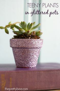 A festive and easy gift idea: DIY succulents in glittered pots. Tutorial from theprettybee.com.