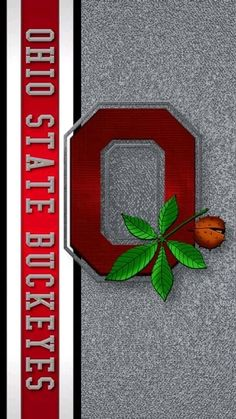 Buckeyes Football, Ohio State Football, Ohio State Buckeyes, Ohio State Wallpaper, Tumbler Designs, Quilts, Dice, Wallpapers, Tattoos