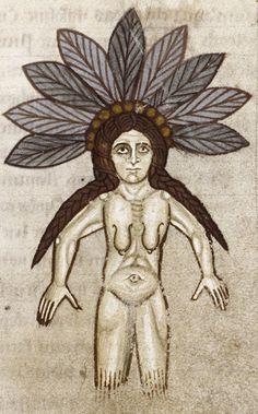 Medieval Bestiary : Mandrake Gallery