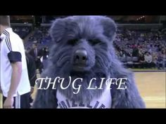 Thug Life   Best Thug Life compilation Episode 12   Funny videos 2015