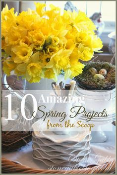10 Spring Project... these are must-try's!