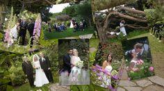 8 tips for your California garden wedding