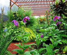 1000 Images About Gardening Organizations Amp References On