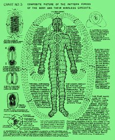 A person's health and well-being are determined by the natural flow of energy through the body. Polarity Therapy incorporates a systemic knowledge of energy mapping based on the five natural elements (Ether, Air, Fire, Water, and Earth) and the 7 primary energy centers or chakras.