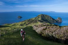 Coromandel walkway 4-5hr coastal walk with good views out to Great Barrier and Cuvier Island.